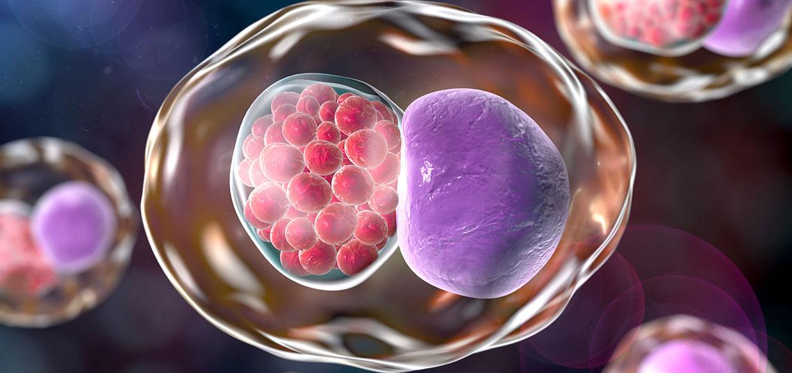 Urintest morgenurin chlamydien Safer Sex